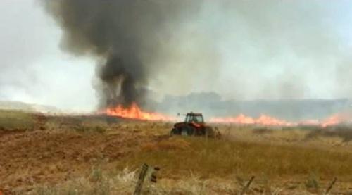 Continúan trabajando contra 2 incendios en la costa de Dorrego