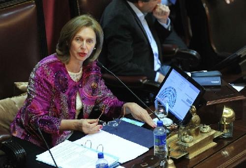 Para Beatriz Rojkés,para la senadora nacional y esposa de Alperovich la quema de urnas y los incidentes fueron