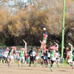 Rugby - Club Sarmiento como local cayó ante Patagones.