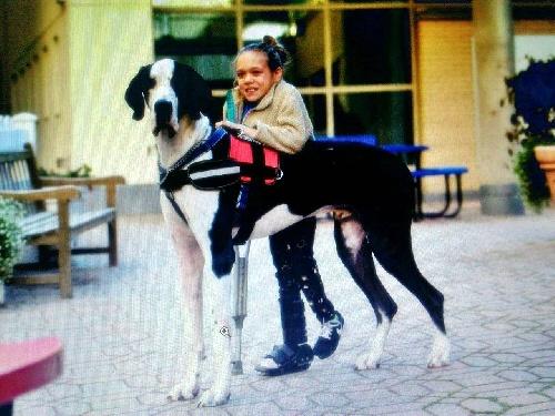 La amistad de la pequeña Bella y George, el perro que le cambió la vida