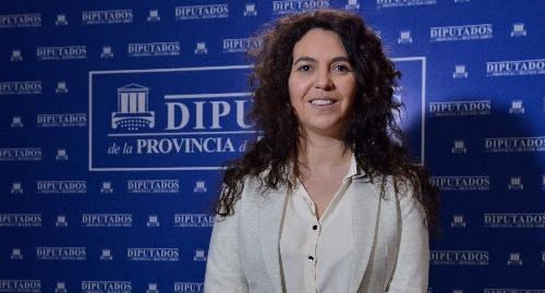 Diputada provincial (FpV PJ ) Marisol Merquel presentó un proyecto
