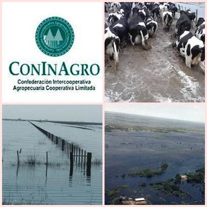CONINAGRO solicita medidas para los productores lecheros afectados por el agua