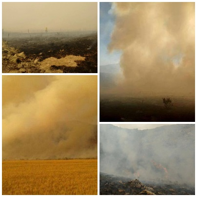 Pigüé: Importante incendio en la sierras de la zona