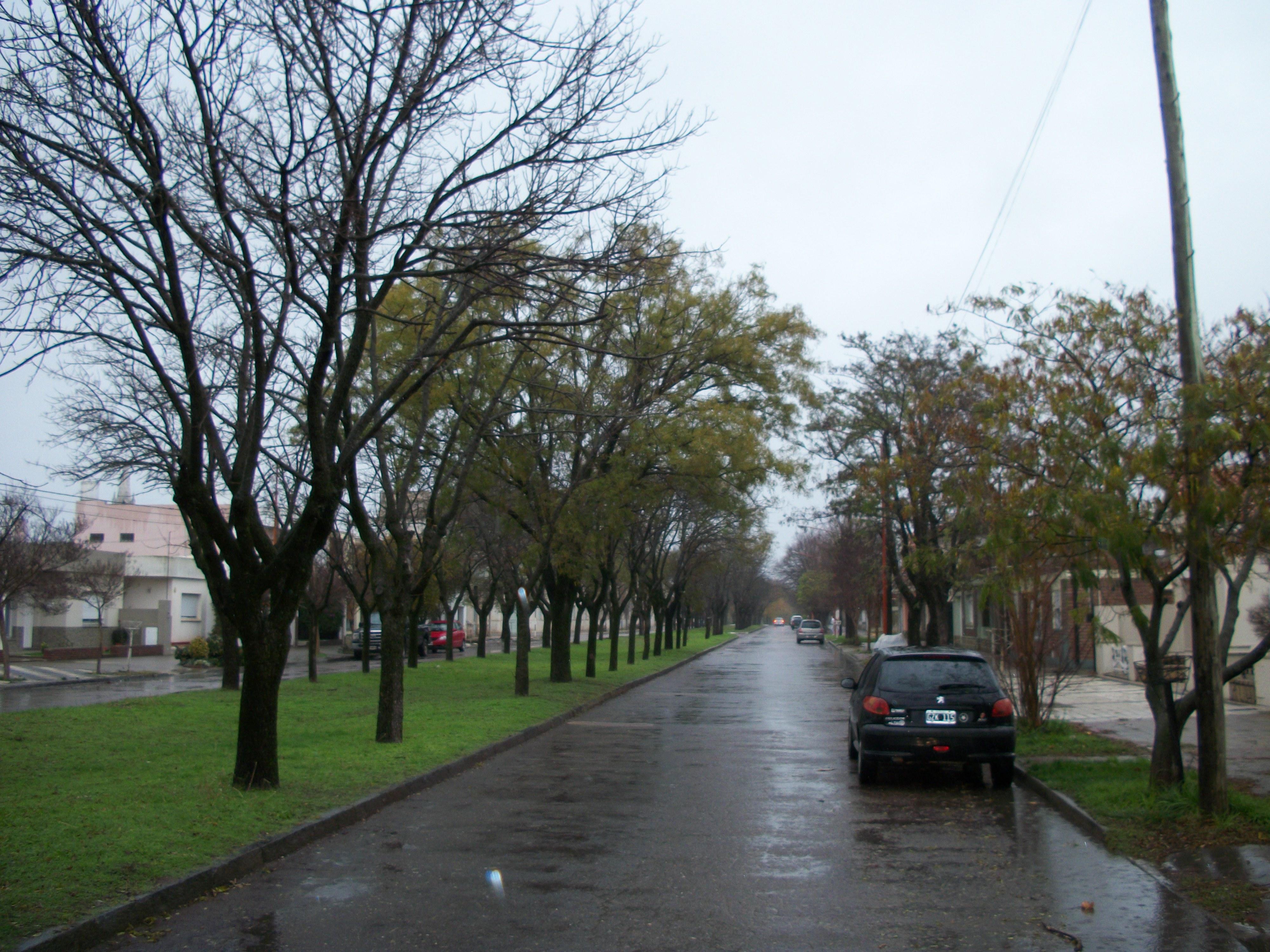 Pigüé: 39 mm el total de lluvia caída en la ciudad