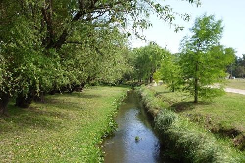 Pigüé: información sobre tránsito en el Parque Municipal el fin de semana