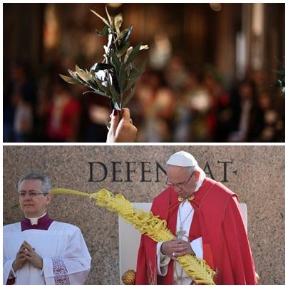 Domingo de Ramos: los católicos bendicen y se reparten ramas de olivo