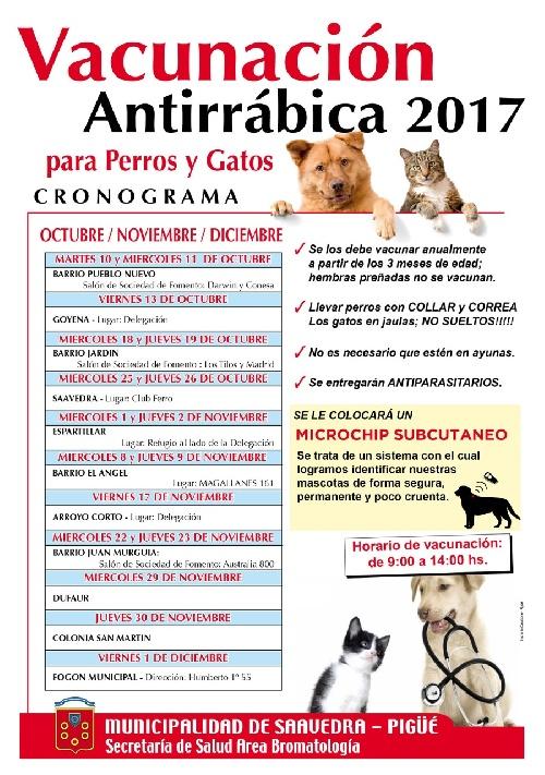 Vacunación antirrábica obligatoria de perros y gatos