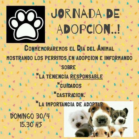 Jornada de adopción de mascotas en el Parque Saint Come