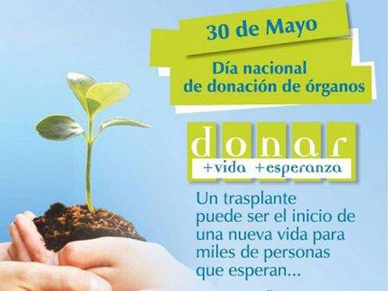 Día Nacional de la Donación de Órganos  - Como donar