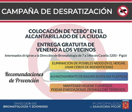 Campaña de desratización municipal