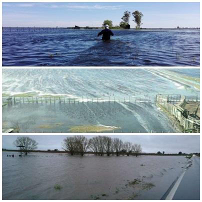 Oficializaron declaración de zona de desastre y emergencia en 11 provincias – 7 Municipios de Buenos Aires