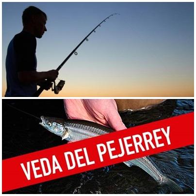 Comenzó la veda de pesca de Pejerrey en Pcia de Bs. As.