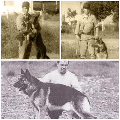 Dia nacional del perro - La historia del valiente y fiel Chonino