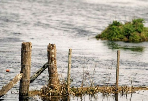 Inundaciones: el campo desmiente a Anibal Fernandez El jefe de Gabinete apuntó a los canales clandestinos y la siembra directa