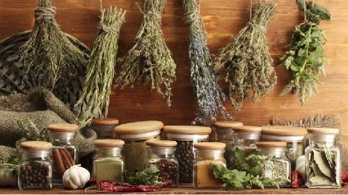 Cómo actúan las hierbas  aromáticas que mejoran el funcionamiento del cerebro
